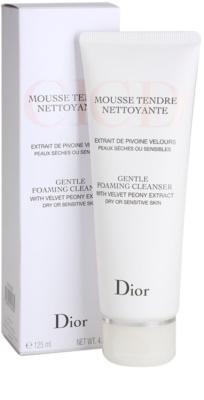 Dior Cleansers & Toners tisztító habzó gél száraz bőrre 1