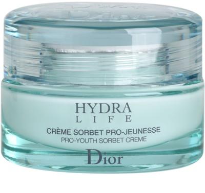 Dior Hydra Life hydratační krém pro normální až smíšenou pleť