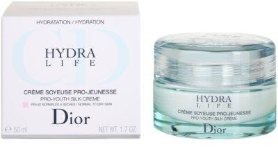 Dior Hydra Life creme hidratante para pele normal a seca 3