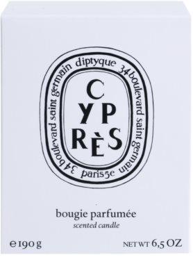 Diptyque Cypres Duftkerze 3