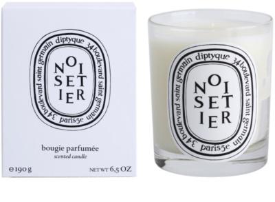 Diptyque Noisetier vela perfumado