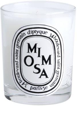 Diptyque Mimosa Duftkerze 1