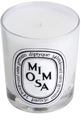 Diptyque Mimosa Duftkerze 2