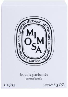 Diptyque Mimosa Duftkerze 3