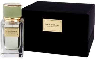 Dolce & Gabbana Velvet Bergamot Eau de Parfum für Herren