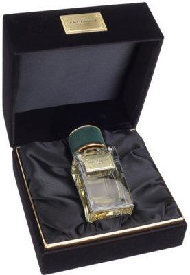 Dolce & Gabbana Velvet Vetiver Eau de Parfum unisex 1