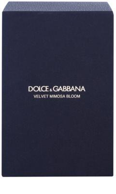 Dolce & Gabbana Velvet Mimosa Bloom woda perfumowana dla kobiet 5
