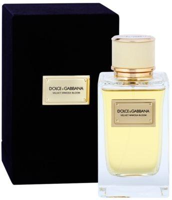 Dolce & Gabbana Velvet Mimosa Bloom woda perfumowana dla kobiet 2