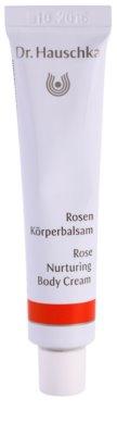 Dr. Hauschka Body Care високоефективний крем для тіла з трояндовою олійкою