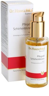 Dr. Hauschka Body Care telový olej z trnky 1