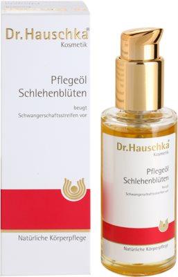 Dr. Hauschka Body Care telový olej z trnky 2