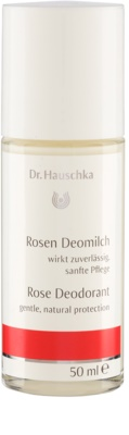 Dr. Hauschka Body Care desodorizante de rosa roll-on