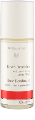 Dr. Hauschka Body Care desodorizante de rosa roll-on 1