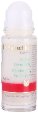 Dr. Hauschka Body Care Salbeideo 3