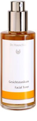 Dr. Hauschka Cleansing And Tonization tónico para pele normal e seca