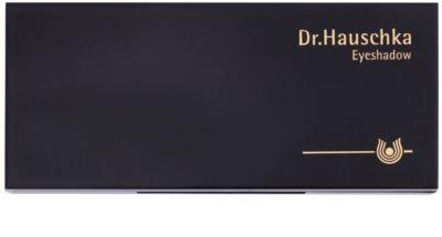 Dr. Hauschka Decorative Palette mit Lidschatten 2