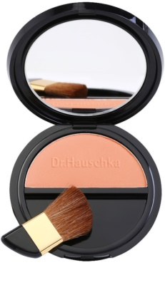 Dr. Hauschka Decorative Puder-Rouge 1