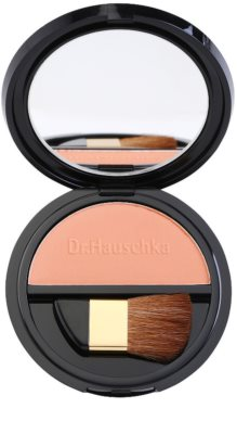 Dr. Hauschka Decorative Puder-Rouge