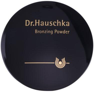 Dr. Hauschka Decorative Bräunungspuder 1