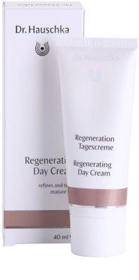 Dr. Hauschka Facial Care Regenerierende Tagescreme für reife Haut 1