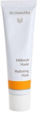 Dr. Hauschka Facial Care mascarilla hidratante