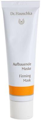 Dr. Hauschka Facial Care festigende Maske für das Gesicht