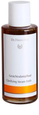 Dr. Hauschka Facial Care baño de vapor para rostro para una limpieza profunda
