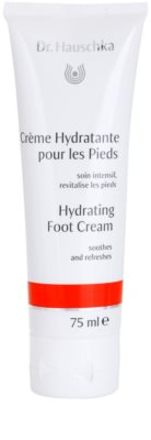 Dr. Hauschka Hand And Foot Care crema hidratante para pies