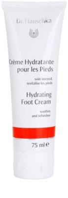 Dr. Hauschka Hand And Foot Care creme hidratante para pernas
