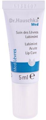 Dr. Hauschka Med захисний бальзам для губ