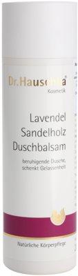 Dr. Hauschka Shower And Bath balsam pod prysznic z lawendą i drzewem sandałowym
