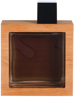 Dsquared2 He Wood Intense eau de toilette férfiaknak 2