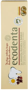 Ecodenta Kids pasta de dientes para niños con aroma de grosella negra y extracto de manzanilla 2
