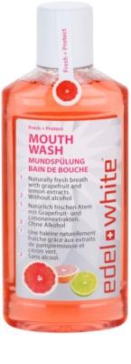Edel+White Fresh + Protect рідина для полоскання  рота для свіжого подиху