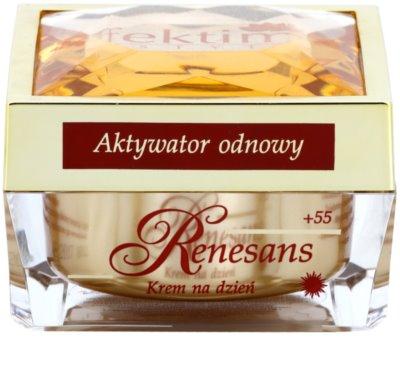 Efektima Institut Renaissance +55 crema de día reparadora  con efecto alisante