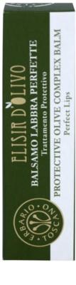 Erbario Toscano Elisir D'Olivo balsam de buze protector 2