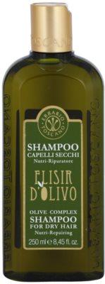 Erbario Toscano Elisir D'Olivo Haarshampoo mit  Olivenöl
