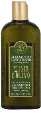 Erbario Toscano Elisir D'Olivo șampon par cu ulei de masline