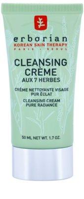 Erborian Detox 7 Herbs creme de limpeza para pele radiante