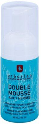 Erborian Detox 7 Herbs nežna čistilna pena za obnovo površine kože