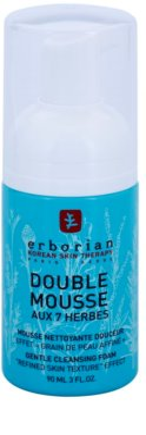Erborian Detox 7 Herbs sanfter Reinigungsschaum zur Erneuerung der Hautoberfläche