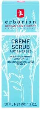 Erborian Detox 7 Herbs schonende Peelingcreme zur Erneuerung der Hautoberfläche 2