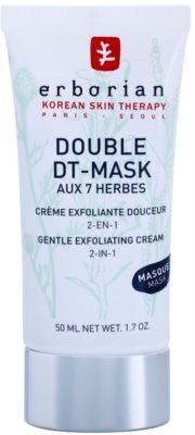 Erborian Detox Double DT-Mask 7 Herbs jemný exfoliačný krém 2v1