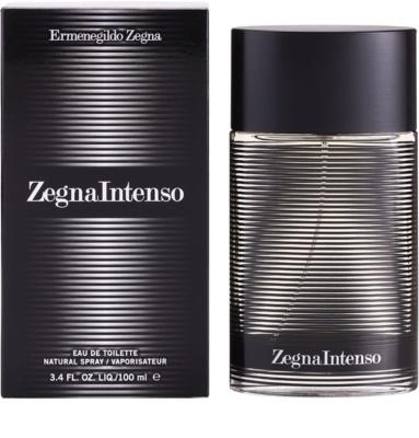 Ermenegildo Zegna Intenso Eau de Toilette für Herren