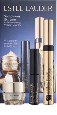 Estée Lauder Sumptuous Extreme set cosmetice V. 2