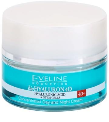Eveline Cosmetics BioHyaluron 4D crema de día y noche 40+