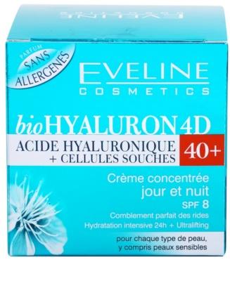 Eveline Cosmetics BioHyaluron 4D creme de dia e noite  40+ 4