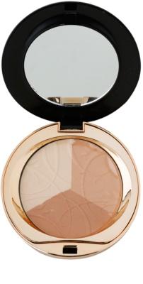 Eveline Cosmetics Celebrities Beauty puder matujący z minerałami