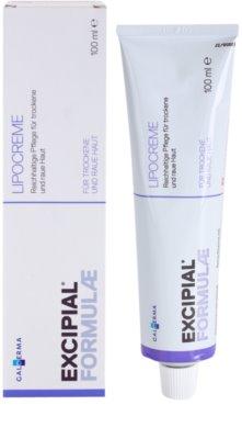 Excipial Formulae creme rico nutritivo para pele seca a muito seca 1