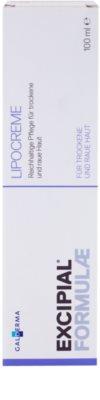 Excipial Formulae reichhaltige, nährende Creme für trockene und sehr trockene Haut 2
